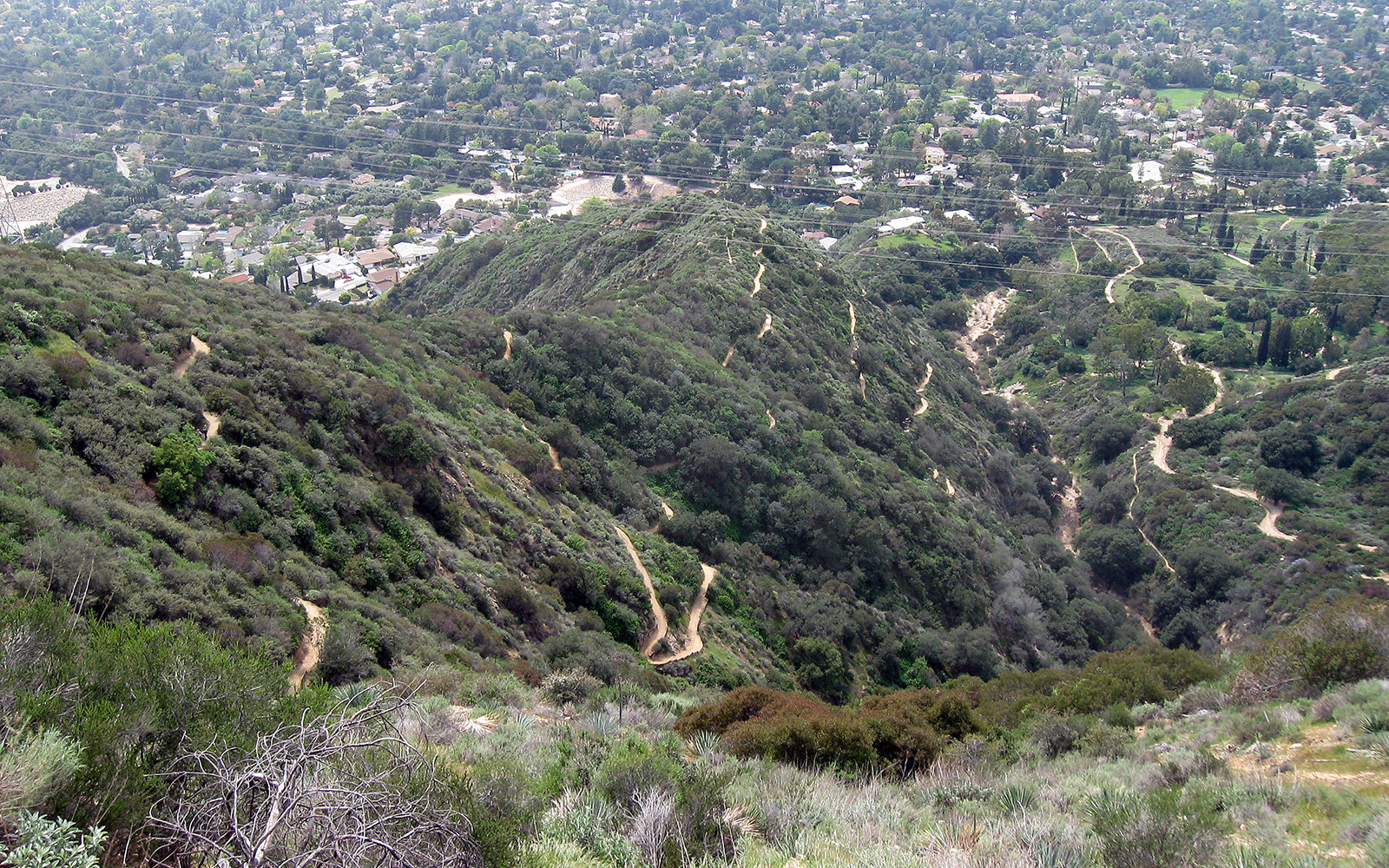 Where You Can Hike In La Now That Runyon Canyon Is