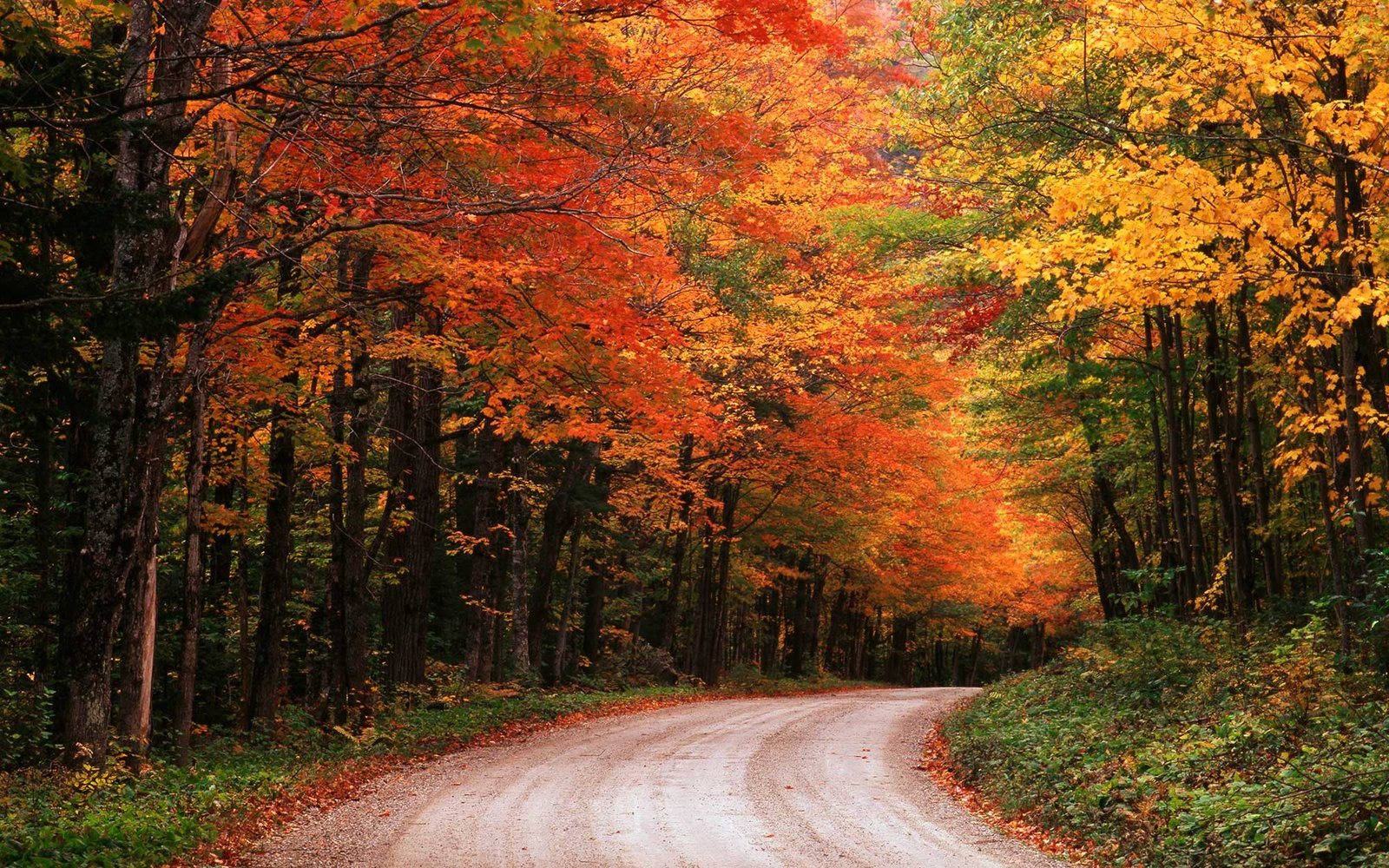 American Wallpaper Fall River The Best National Park In Every State Travel Leisure