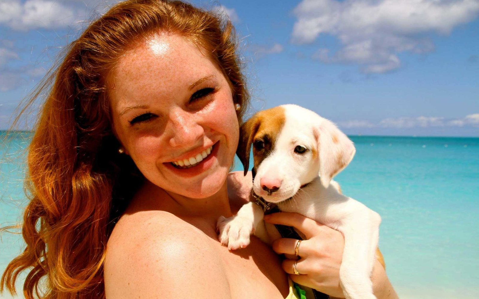 Rescue Dogs Puppies For Adoption This Tropical Island Is Filled With Puppies You Can Adopt Travel