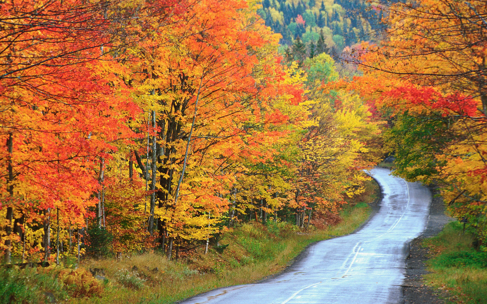 Fall Moutains Wallpaper 12 Beautiful Maine Fall Foliage Locations Travel Leisure