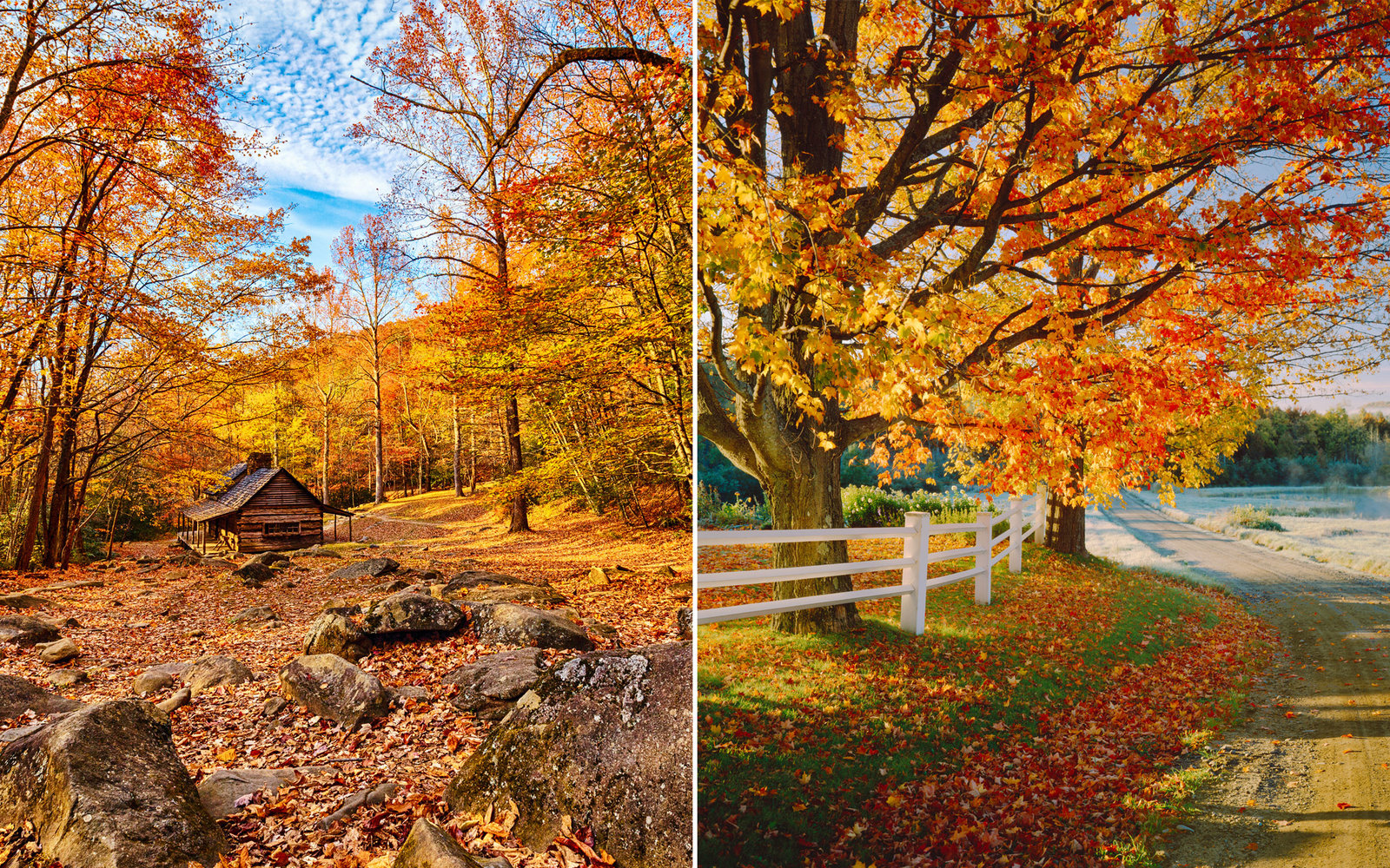Late Fall Wallpaper Nature The Only Map You Need To Plan A Perfect Fall Foliage Trip