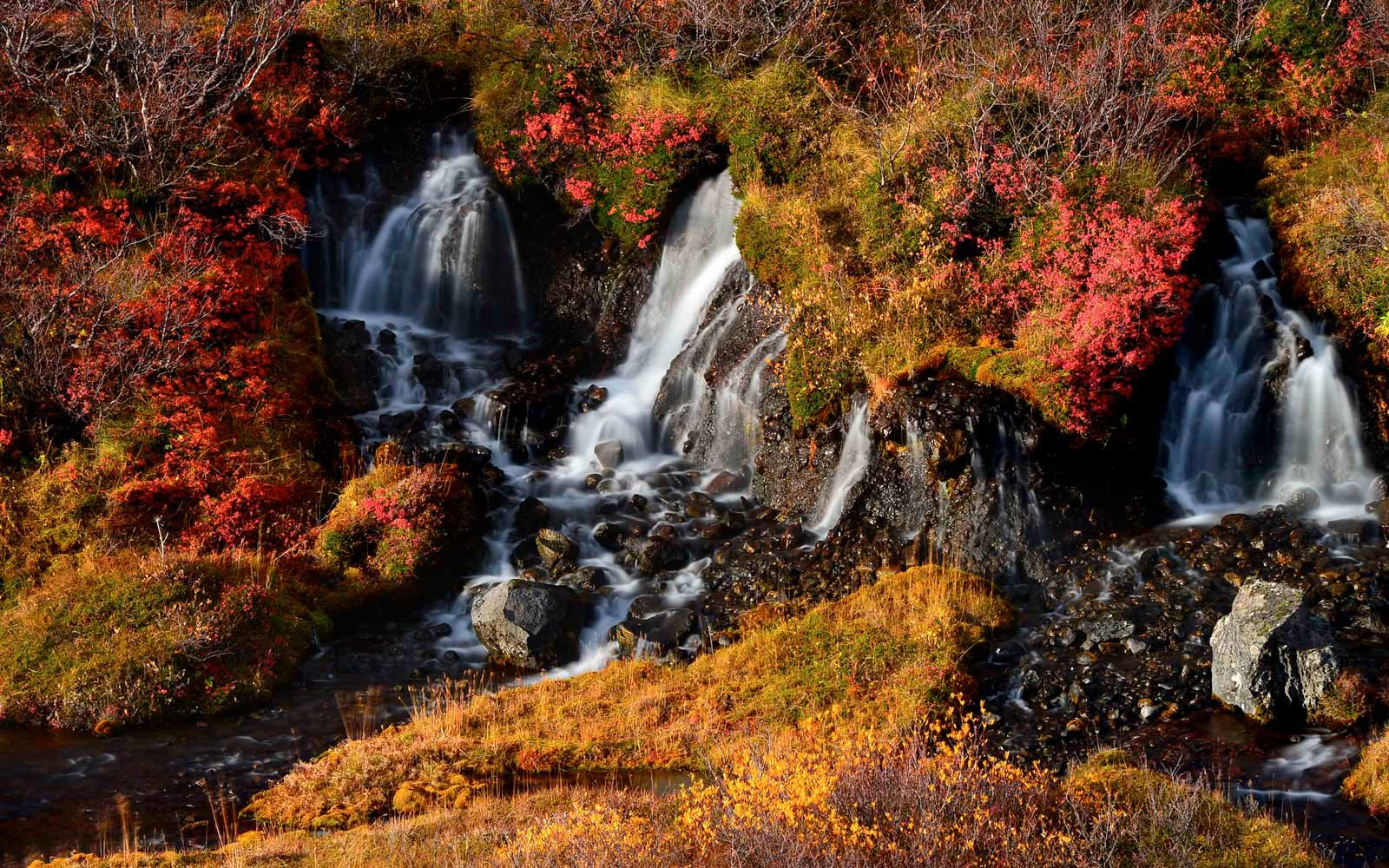 New Hampshire Fall Foliage Wallpaper Beautiful Fall Leaves Around The World Travel Leisure