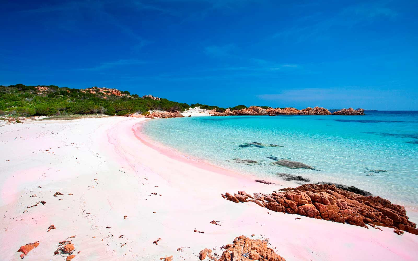 The World39s Most Beautiful Pink Sand Beaches Travel