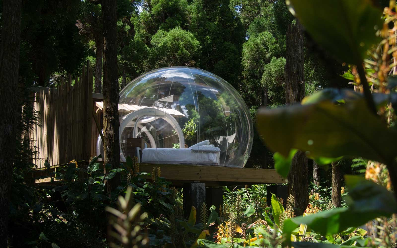 Reunion Island You Can Sleep In A Bubble Surrounded By Forest On One Of The Most