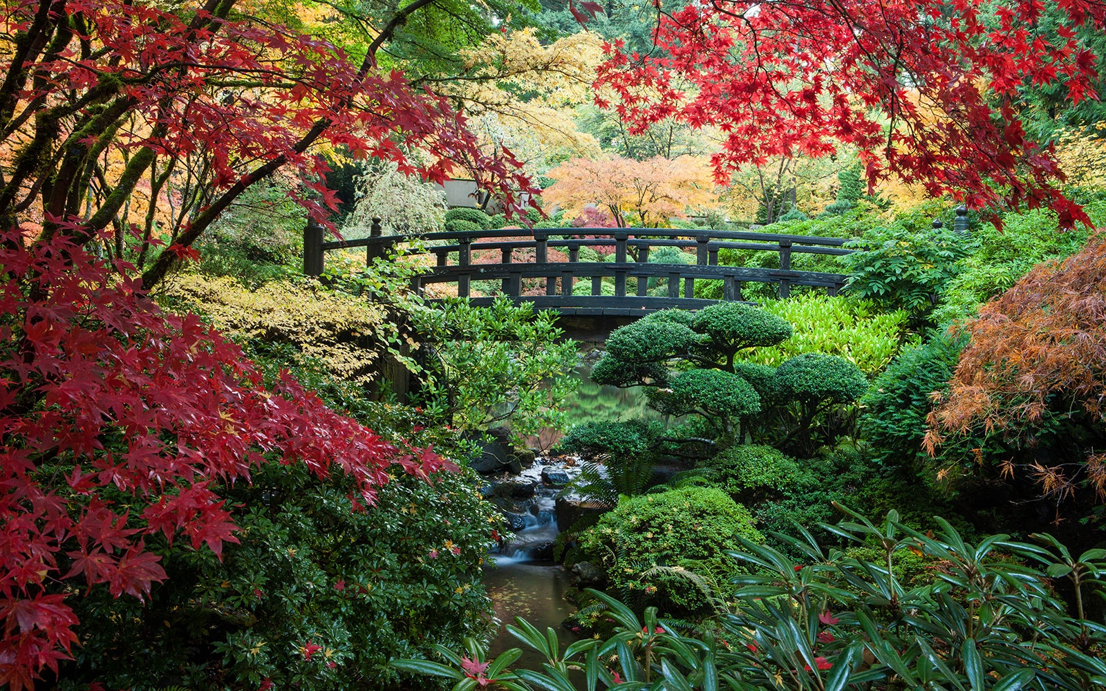 Central Park In Fall Wallpaper America S Most Beautiful Gardens Travel Leisure