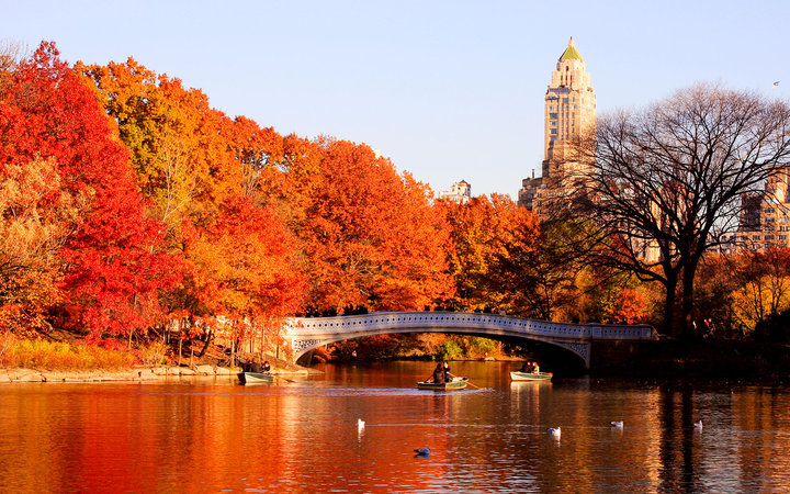 4k Central Park In The Fall Wallpaper 18 Beautiful Photos Of Fall From Around The World Travel