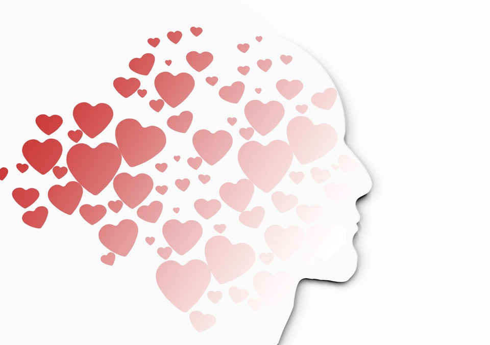 Cardiac Consciousness Can We Really Think With Our Hearts?