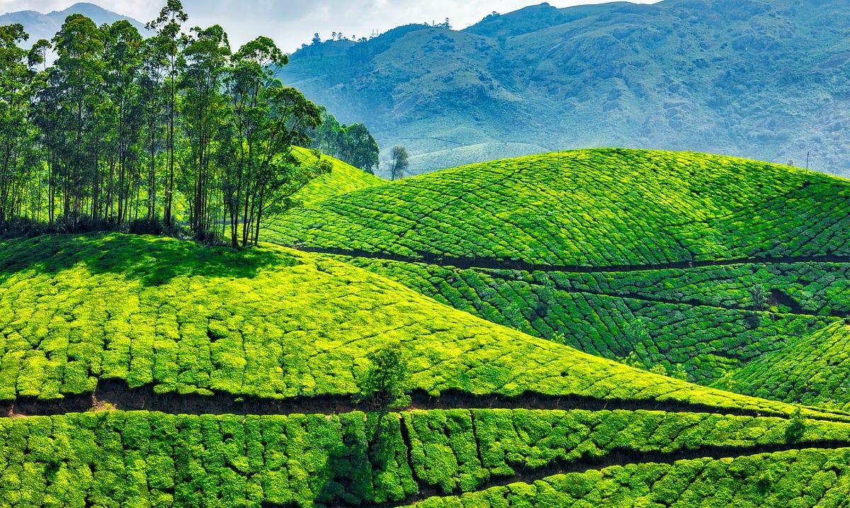 Athirapally Falls Wallpapers Best Destinations In Kerala To Visit Digital Nomad Medium