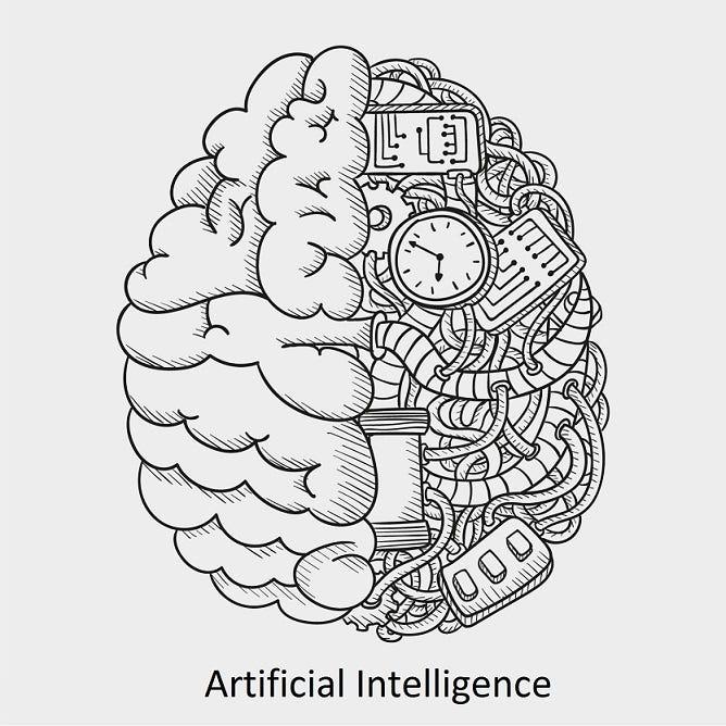 3d human brain brain