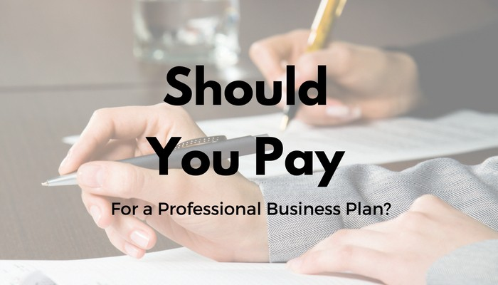 Should You Pay For a Professional Business Plan? \u2013 Multiplier