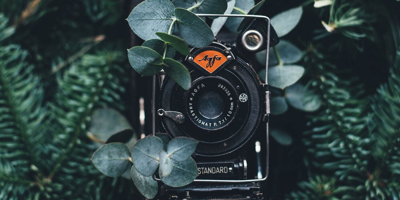 Free Photography Stock 15 Of The Best Free Stock Image Sites To Use Now The Startup