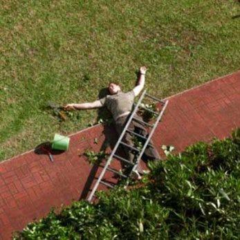 Falling Off Of A Ladder Changed My Life Bullshitist