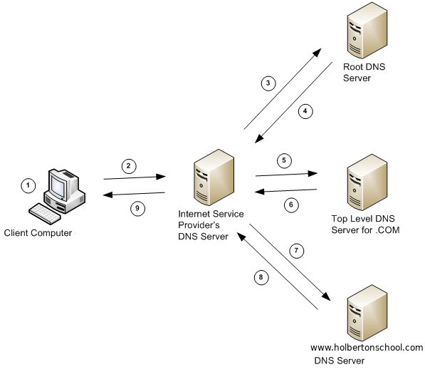 Dns Diagram Wiring Schematic Diagram
