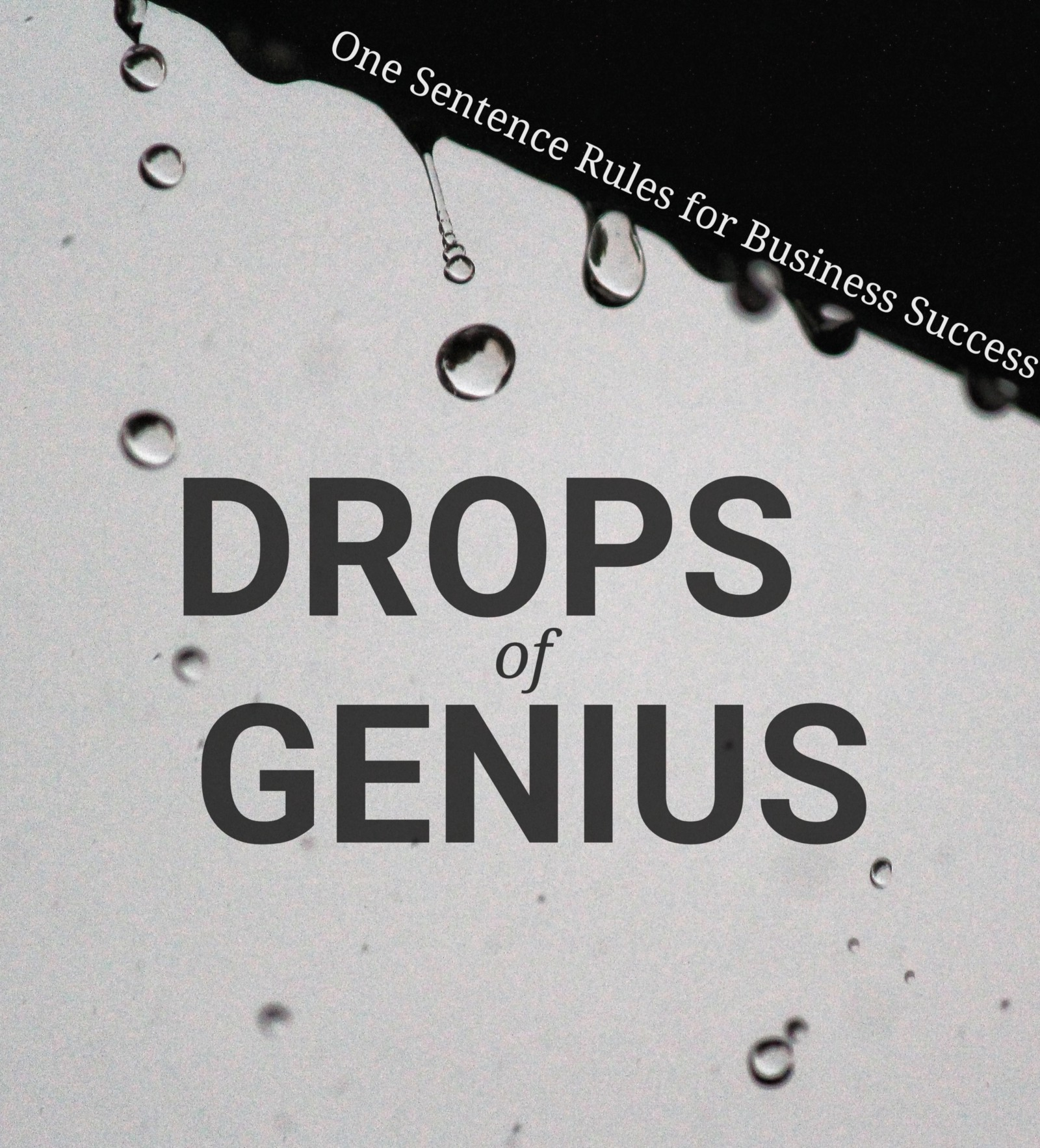 2 Genius Drops Of Genius One Sentence Rules For Business Success 2