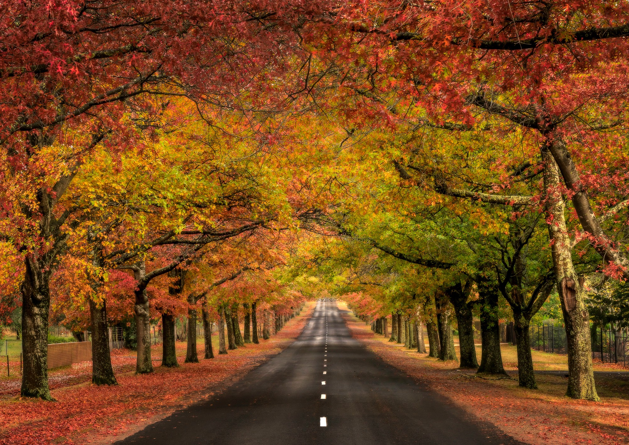 Early Fall Wallpaper What S The Secret To Landscape Photography It S