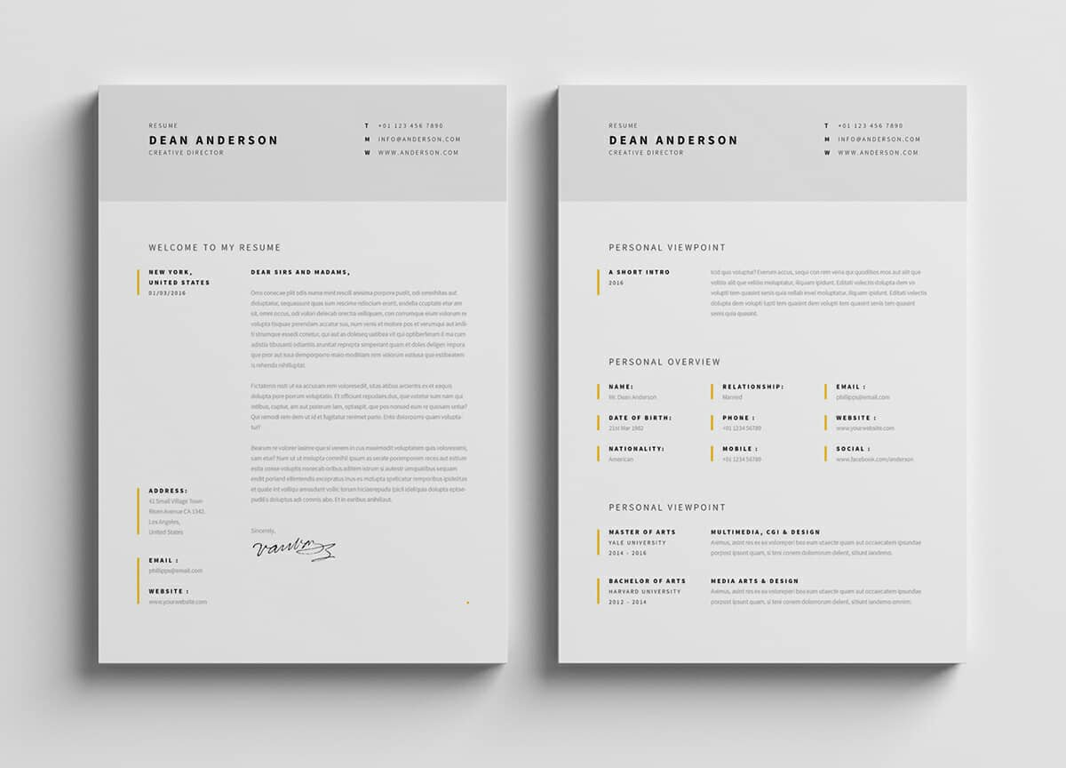modern minimalist resume fonts