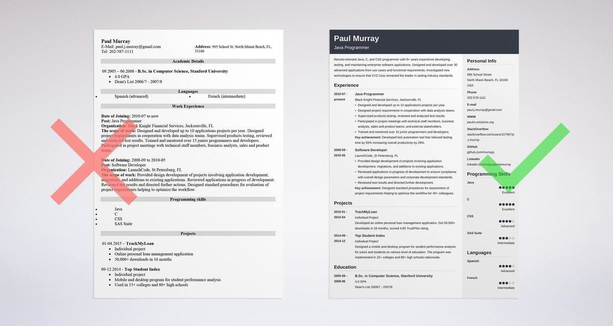Programmer Resume Sample  Complete Guide 20+ Examples