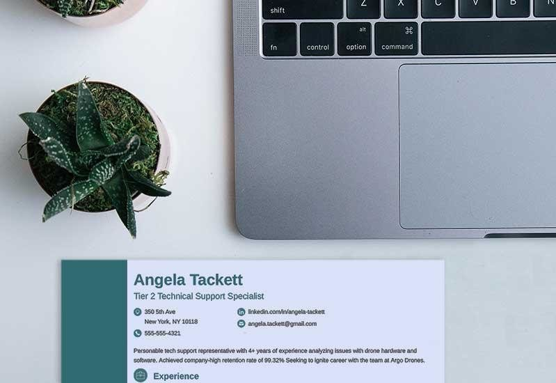 Professional Resume Header Examples  Why They Work 20+ Tips