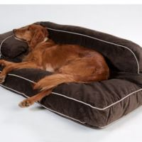 dr fosters dog beds drs foster smith luxury chaise lounge ...