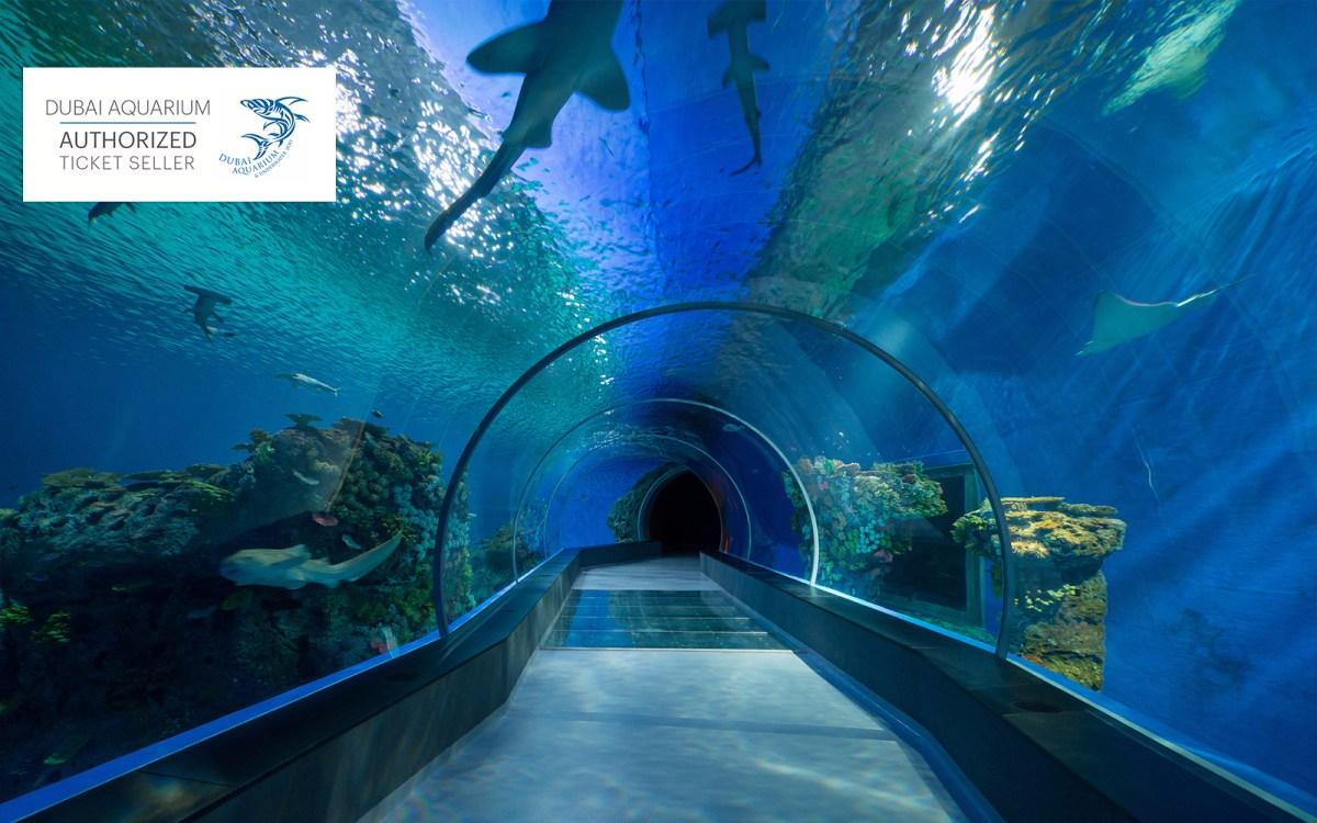 Dubai Aquarium Underwater Zoo Tickets Deals Headout