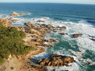 A Garden Route Road Trip - the Otter Trail on the Garden Route