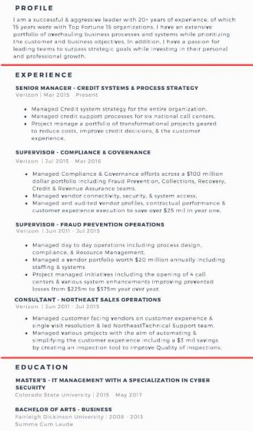 professional resume examples intel