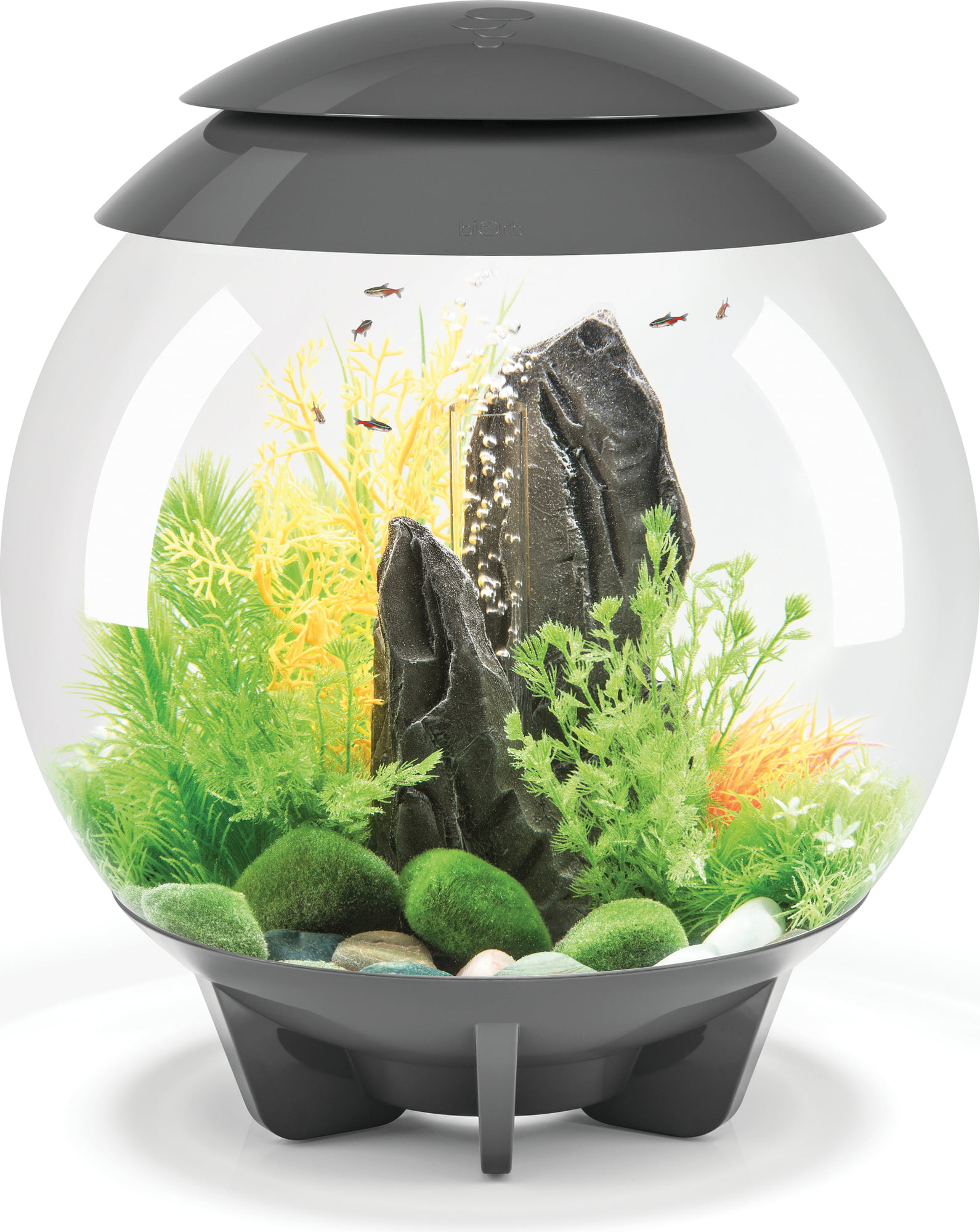 Led Licht Für Nano Aquarium Oase Biorb Halo Led 30l