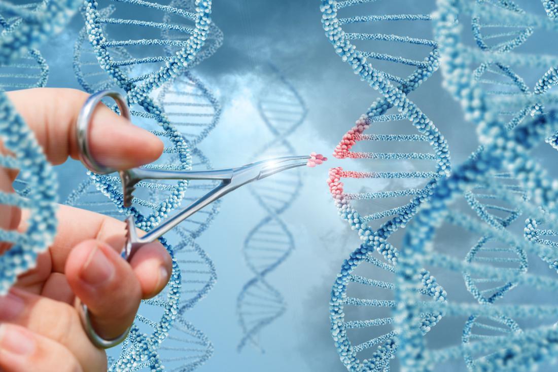 Gene editing technique reverses Huntington's in mouse model