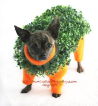 Terracotta Terrier Chia Pet Dog Halloween from