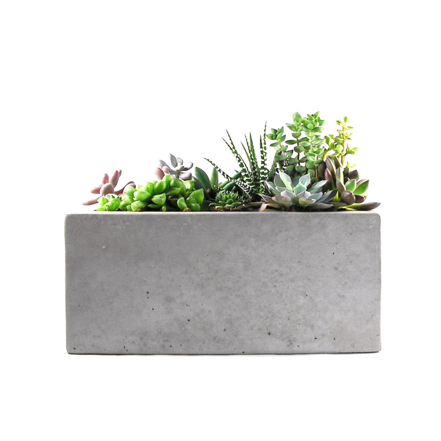 Square Concrete Planter Rectangular Concrete Planter Rough Fusion Touch Of Modern