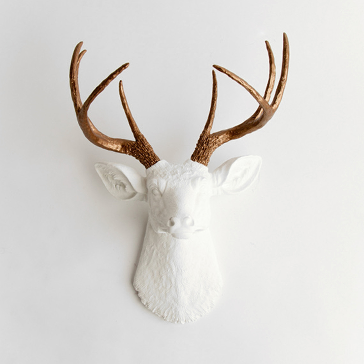 Faux Stag Head The Lydia White Faux Taxidermy Touch Of Modern