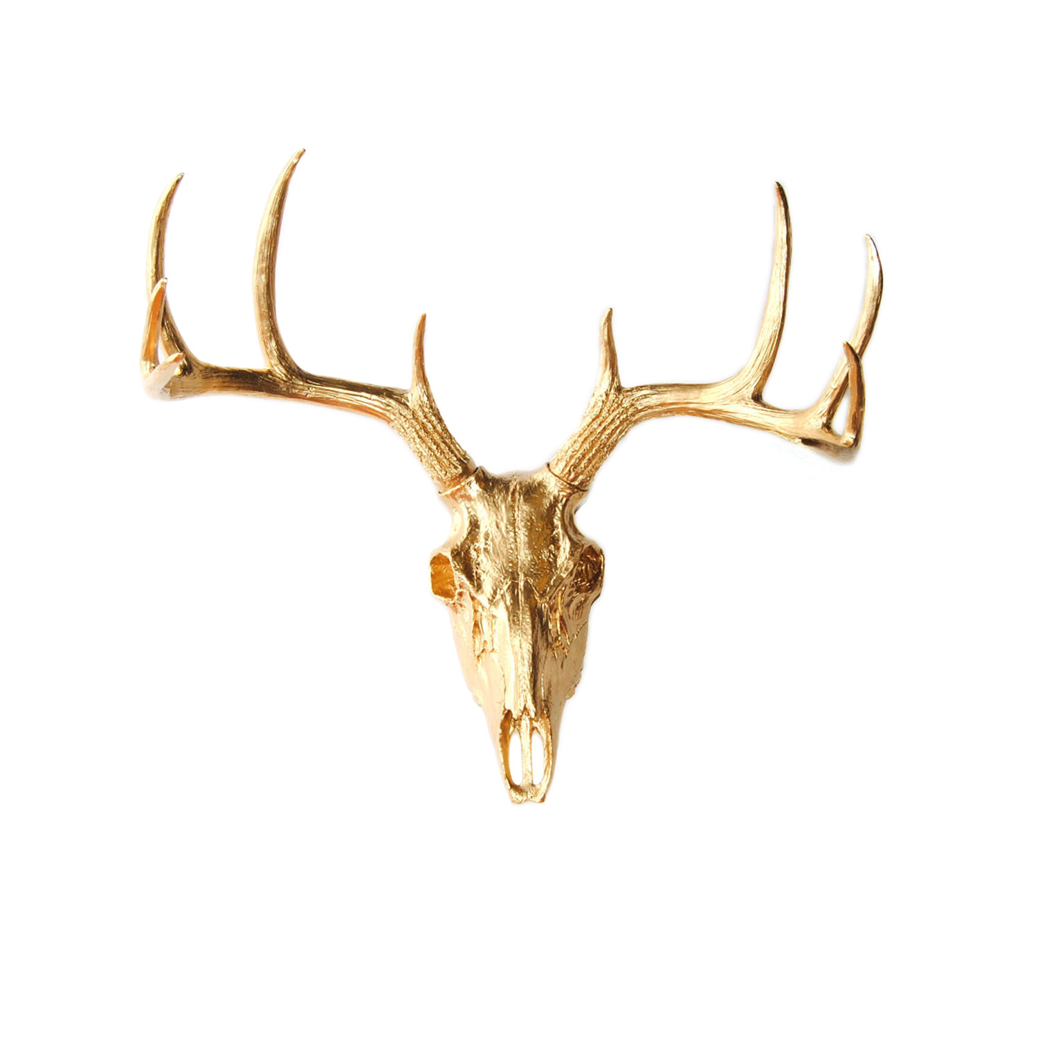 Fake Deer Skull And Antlers The Gold Faux Deer Skull White Faux Taxidermy Touch Of