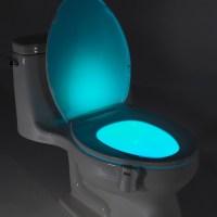Glow Bowl - GlowBowl - Touch of Modern