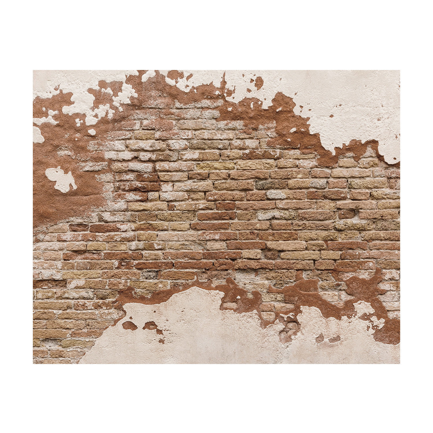 Distressed Brick Distressed Brick Brewster Home Fashions Touch Of Modern