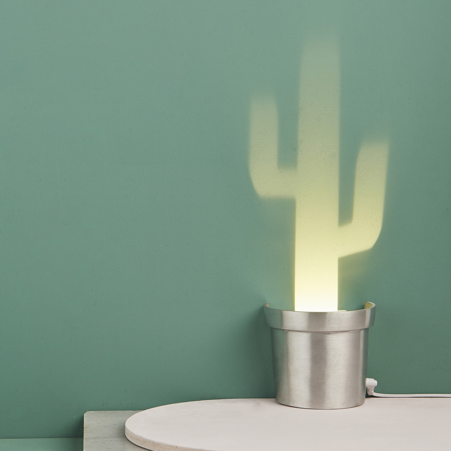 Cactus Verlichting Cactus Lighting Lighting Ideas