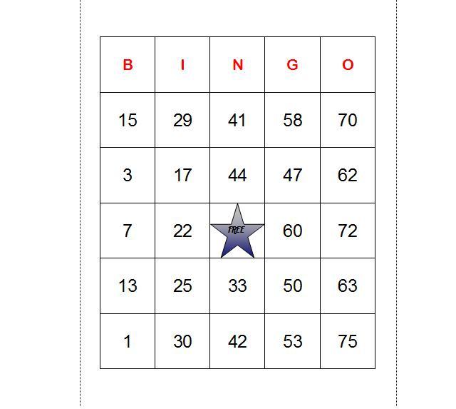 Printable Bingo Card Template – Sample Bingo Card Template