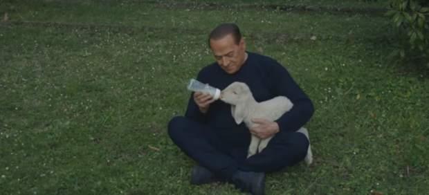 Berlusconi adopta 5 corderos
