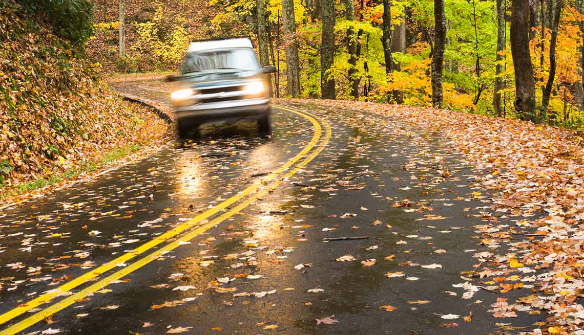 Fall Leaves Road Wallpaper Fall Car Safety Tips Beware Of Driving Hazards