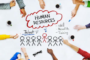Sap Hr Tutorial Human Resource Functional Module Diploma In Human Resources Course Outline Alison