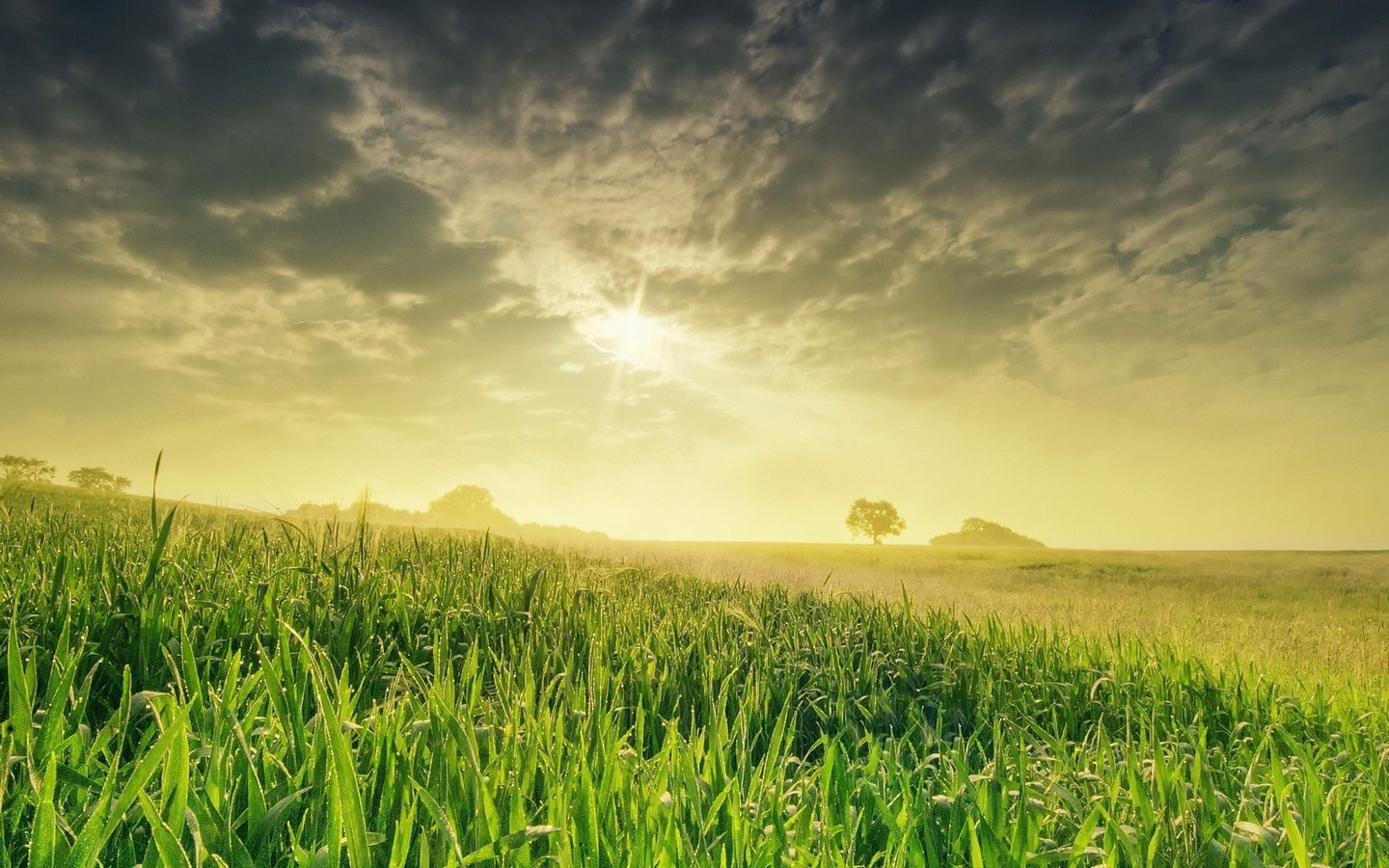 Nice Iphone 5 Wallpapers Fields Land Landscapes Nature Sunset Wallpaper