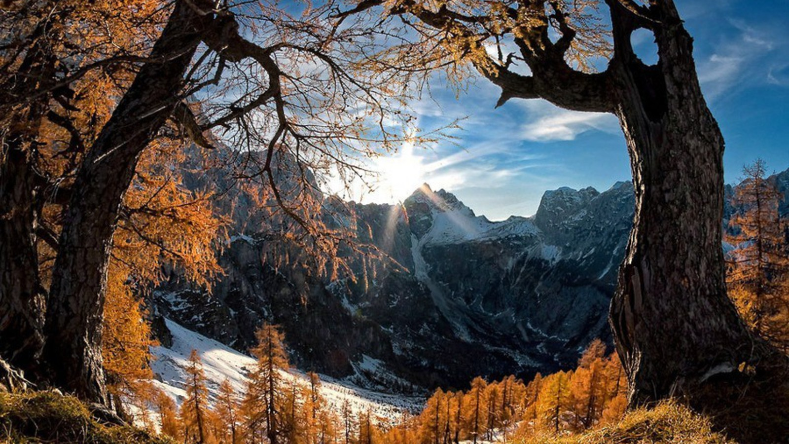 Best Iphone 5 Home Screen Wallpapers Mountains Snow Sun Trees Summer Spring Wallpaper