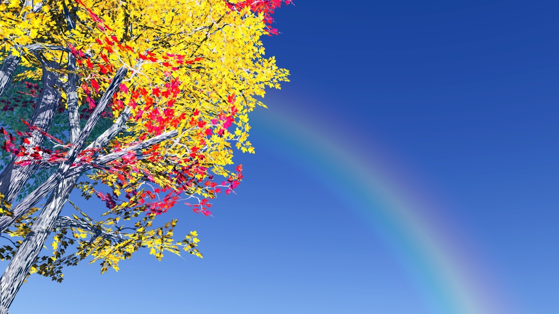 Best Iphone 5 Home Screen Wallpapers Colorful Tree And Rainbow Wallpaper Allwallpaper In