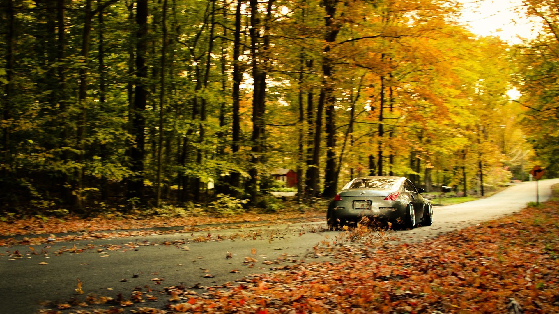 Full Screen Desktop Fall Wallpaper Nissan 350z Fallen Leaves Wallpaper Allwallpaper In