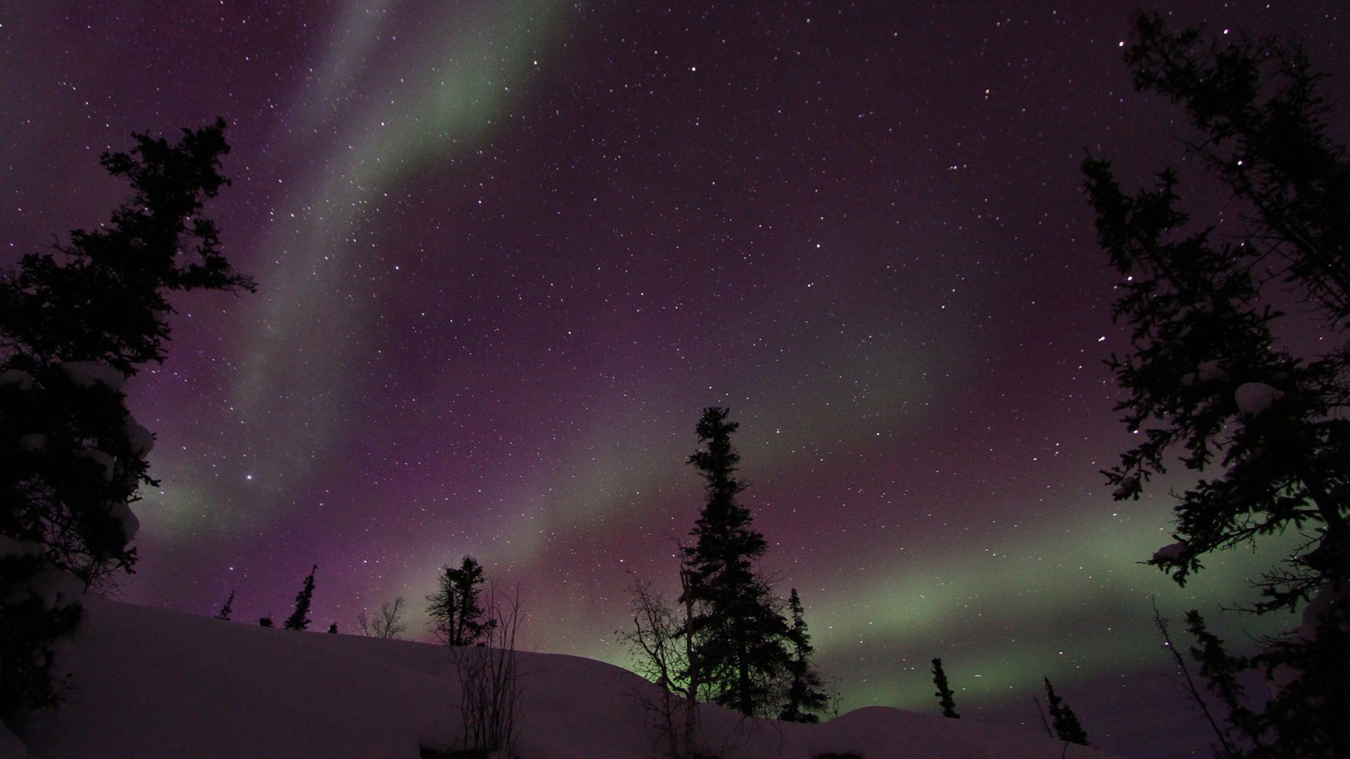 Best Dark Wallpapers For Iphone X Landscapes Nature Snow Trees Aurora Borealis National