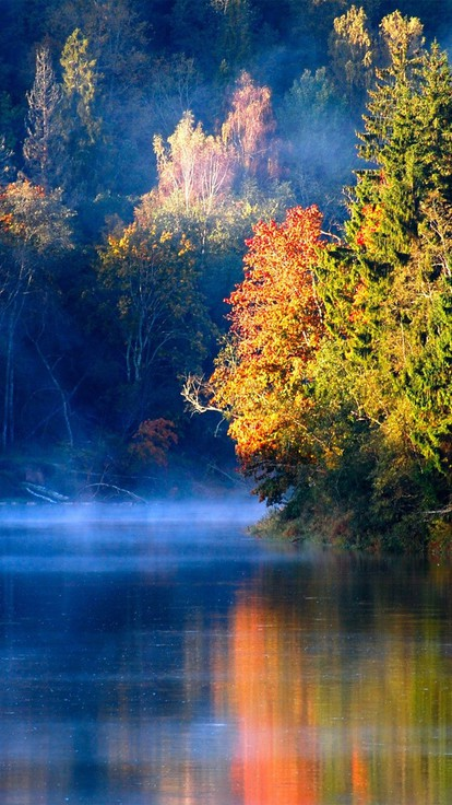 Background Wallpaper Hd Fall Fog Lakes Landscapes Reflections Trees Wallpaper