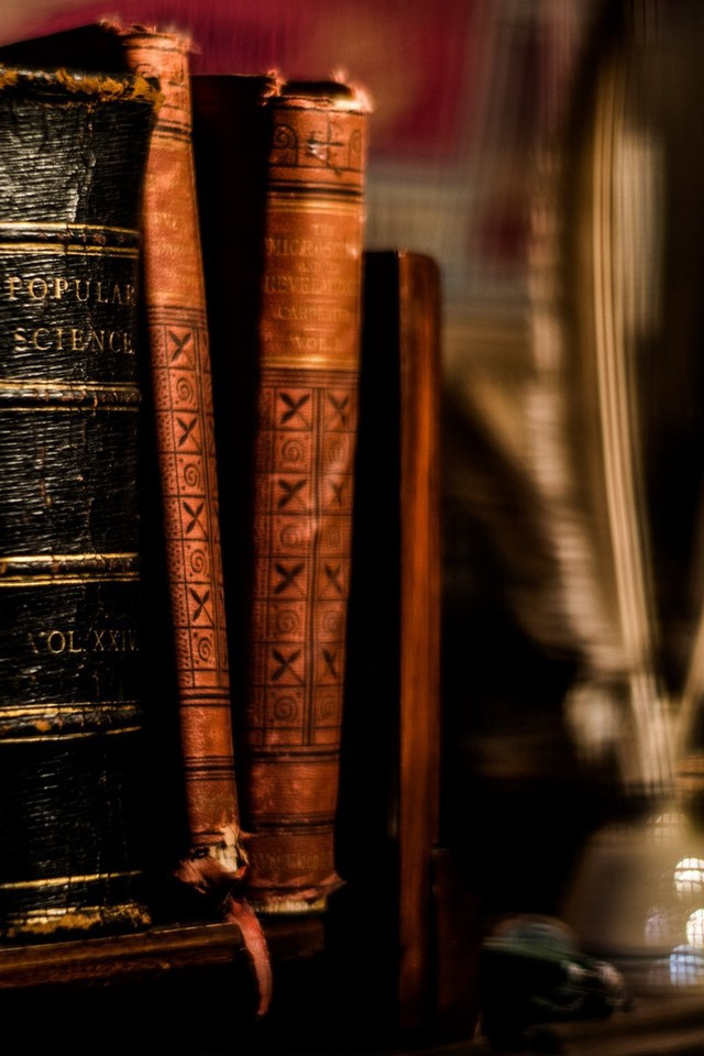 Iphone 5 Wallpaper Hd Shelves Feathers Books Ancient Blurred Background Shelves