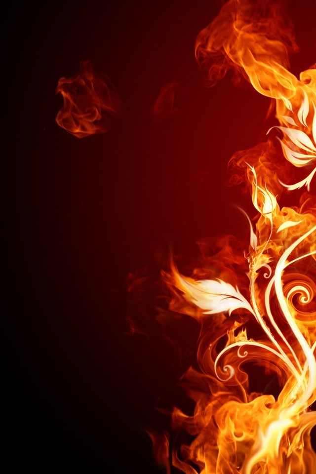 Dark Wallpapers For Iphone X Burn Fire Flower Flames Flowers Wallpaper Allwallpaper
