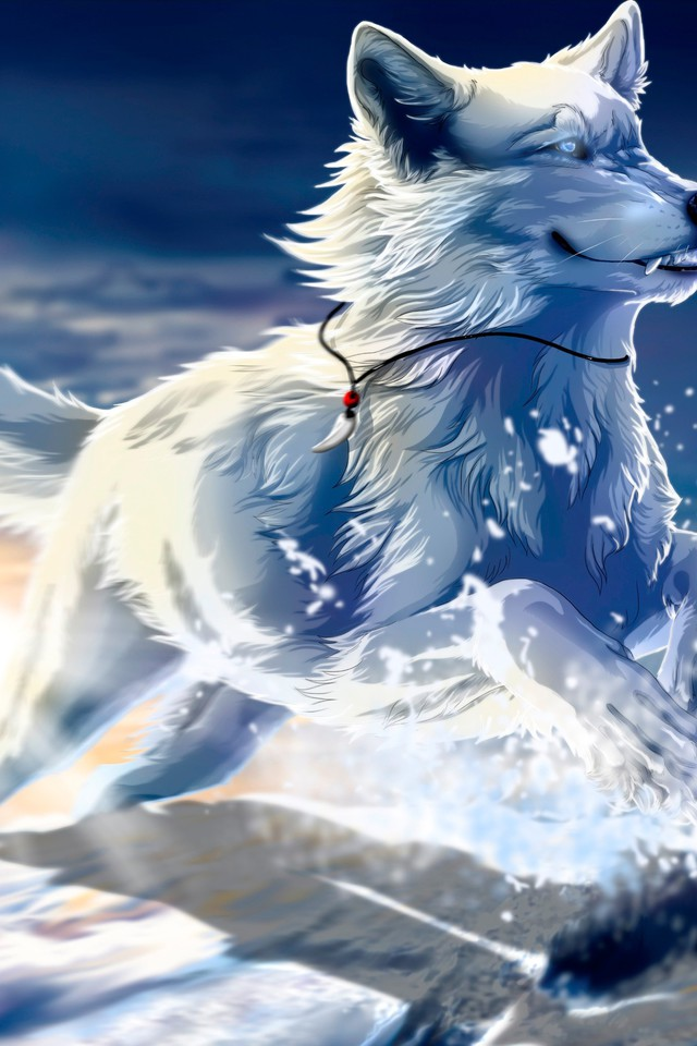 Husky Dog Hd Wallpapers Fantasy Loup Papier Peint Allwallpaper In 5988 Pc Fr