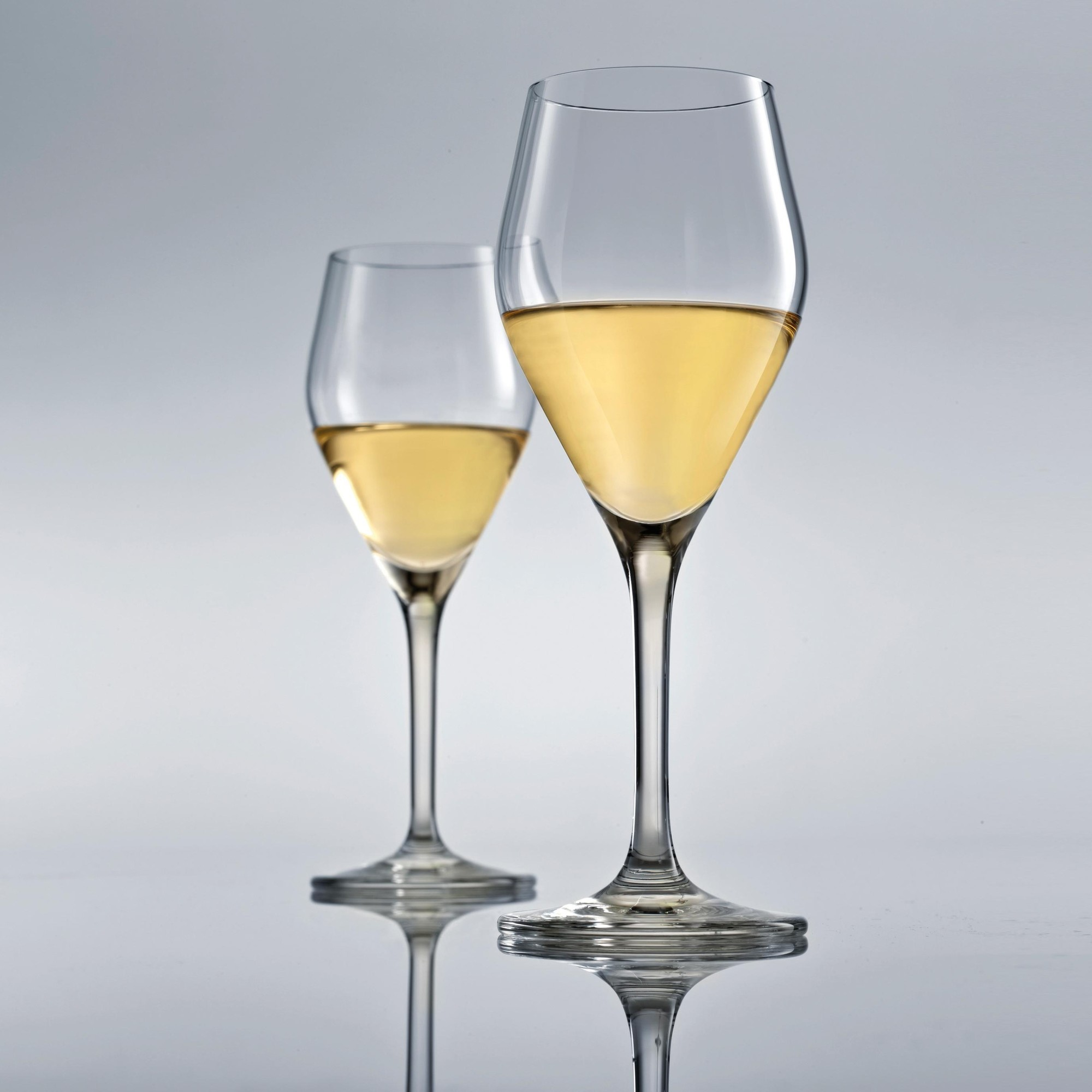 Chardonnay Wine Glass Audience Chardonnay White Wine Glass Set Of 6