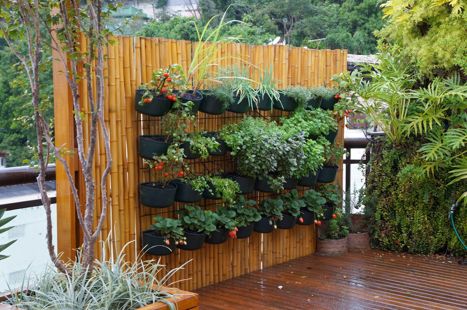 Gambar Pagar Rumah 30 Stunning Low-budget Diy Garden Pots And Containers